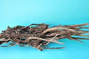 画像4: 流木根(中型)