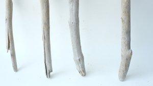 画像2: 枝流木セット