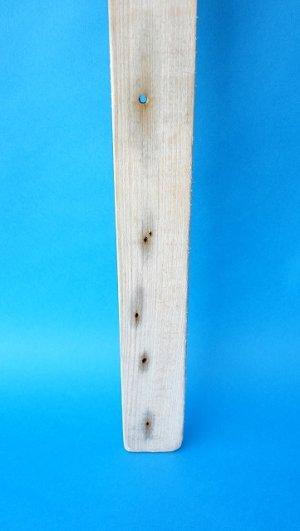 画像2: 板流木