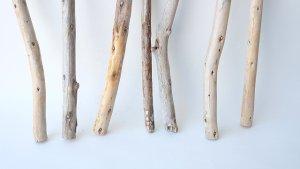 画像2: 棒流木セット(カット流木)