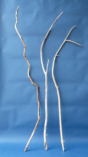 画像1: 枝流木セット