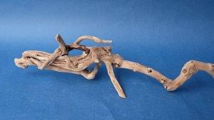 画像2: ミニ流木根