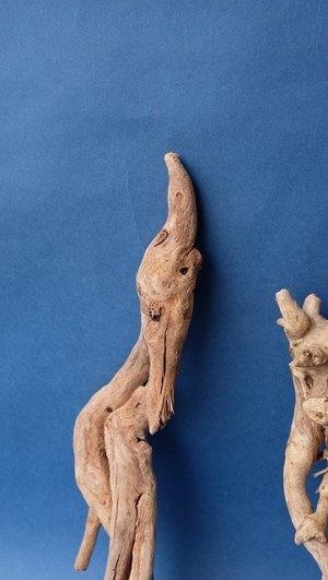 画像3: ミニ流木根セット