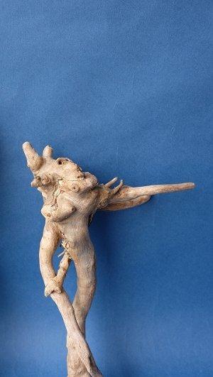 画像4: ミニ流木根セット