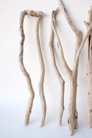 画像4: 小枝流木セット
