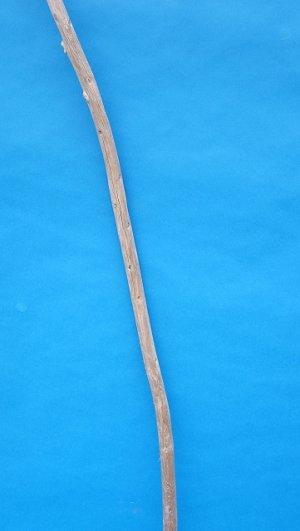 画像3: 棒流木・長尺