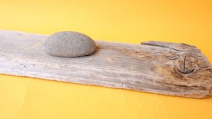 画像4: 板流木
