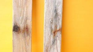 画像3: 板流木セット