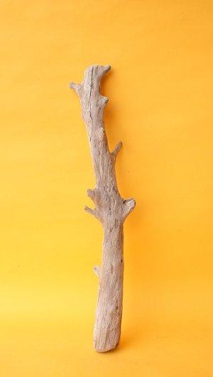 画像1: 小枝流木