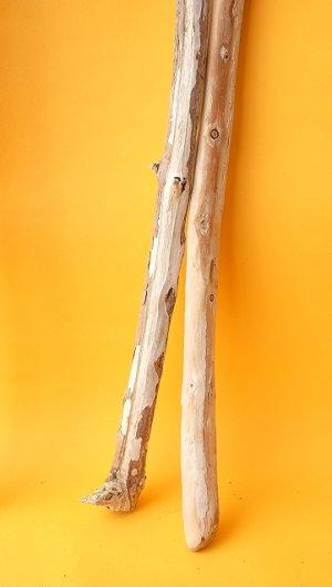 画像4: 棒流木セット