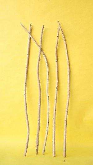 画像1: 棒流木セット