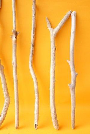 画像5: 小枝流木セット