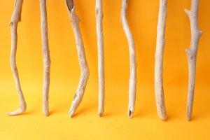 画像2: 小枝流木セット