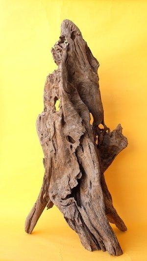 画像1: 変形流木(中型)