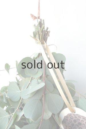 画像2: Dry plants for decor ユーカリ2種シンプルスワッグ