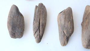 画像2: 変形流木セット