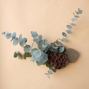 画像1: Dry plants for decor ユーカリクリスマスアレンジ用オブジェ(壁掛けタイプ)