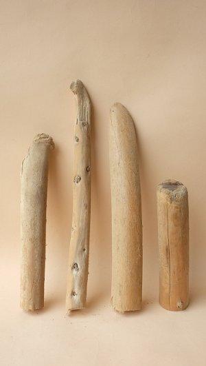 画像1: 棒流木セット(カット流木)